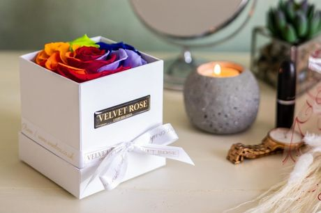 £29 for a single extra-large preserved rainbow rose from Velvet Rose
