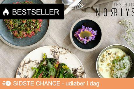 Norrlyst: 4-retters genåbningsmenu. Saml de nærmeste til bæredygtig gastronomi fra Michelin-kok