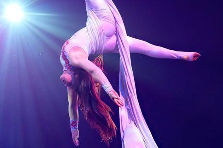 £10.50 & up -- Haydock Park: 'Astounding' Circus Berlin