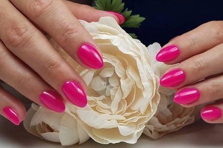 Forkæl dig selv med en skøn manicure eller pedicure inkl. gel polish hos Nails Studio Ani i hjertet af København. I denne lille oase, får du en behandling, der efterlader både hænder og fødder dejligt velplejede.