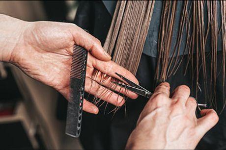 Få rabat hos frisøren - Slå til nu! - Lækker frisørdeal på dameklip, lyse striber, vask, olaplex hårkur samt føn. Dealen gælder til langt hår. Værdi kr. 2400,-