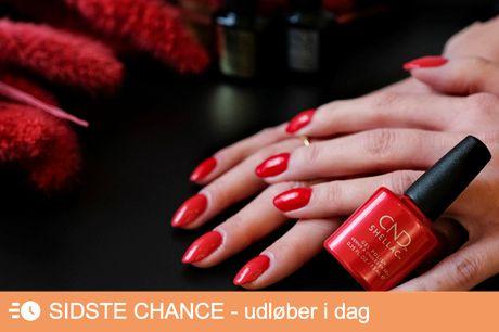 Manicure med CND Shellac. De smukkeste negle, der holder i ugevis!