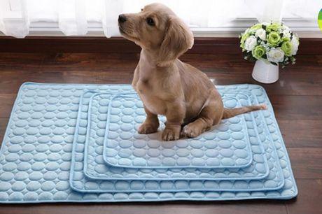 Åndbar og kølende måtte der absorberer kropsvarme og holder dit kæledyr køligt