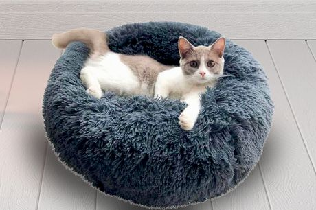 £13.99 instead of £49.99 for a small 50cm plush pet bed, £16.99 for a medium 60cm pet bed or £19.99 for a 70cm large pet bed