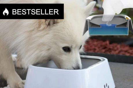 Smart Spildfri hundeskål. Denne smarte vandskål sikrer, at gulvet ikke flyder af vand, når din hund har drukket   Designet gør at skålen ikke kan skvulpe over - Heller ikke under kørsel    - Slip for våde fødder - Hunde lærer hurtigt at drikke af den -