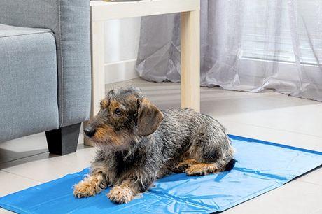 Afkølende måtte til kæledyr (90 x 50 cm). Den er perfekt til at hjælpe kæledyrene, så de kan holde den sommerens varme ud og den hjælper med at regulere deres kropstemperatur   Når de sidder på den, vil dyret have en behagelig, frisk fornemmelse i kroppe