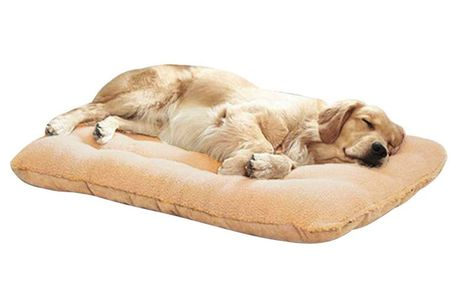 From £14 instead of £34.99 for a wool dog support bed from Direct Warehouse - save up to 60%