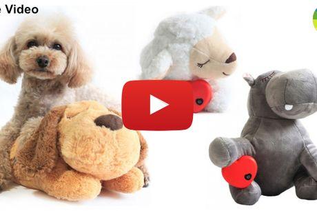 Blød plysbamse der reducerer angst og stress hos dit kæledyr