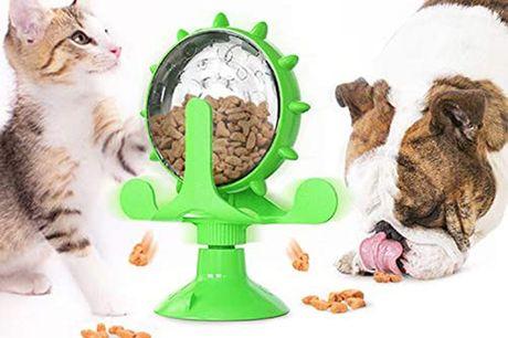 £9.99 for a pet treat dispenser from Domo Secret