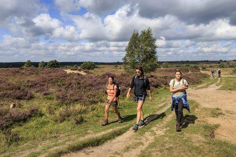 Interactieve natuurwandeling Wil jij erop uit? Dan is deze interactieve wandeling door de natuur wat voor jou! Incl. leuke quizvragen over het regenwoud of de Nederlandse natuur. En met elke goede vraag, bescherm jij het regenwoud!