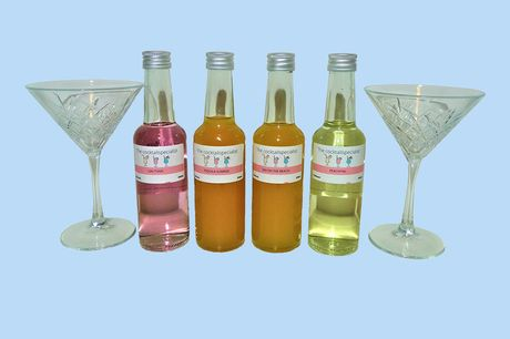 Kant-en-klaar cocktail pakket Schenk 4 cocktails | incl. 2 glazen<br /> O.a. Gin Tonic, Peachtini, Tequila sunrise<br /> Leuk om cadeau te geven!