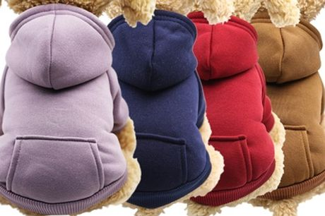 Sporty Pet Clothes for Dogs and Cats