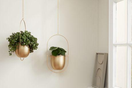 Set van 2 plantenhangers Twee verschillende hoogtes<br /> Hippe, industriële look<br /> Hoogwaardig materiaal