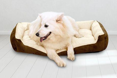 Cama marrón para perro rellena de espuma. La oferta de hoy es totalmente perrasombrosa...Te ofrecemos una  cama pequeña para perro rellena de espuma  por  17,99 €, una  cama mediana para perro  por  19,99 €, o una  cama grande para perro  por  22,99 €.Dim