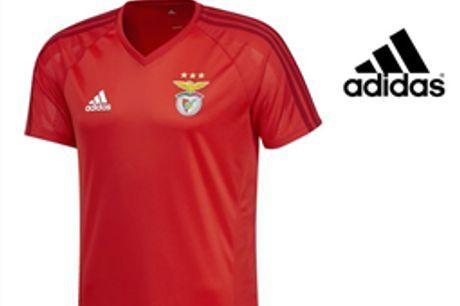Adidas® Camisola de Treino Benfica Oficial | Tecnologia Climacool® - M por 22.97€ PORTES INCLUÍDOS