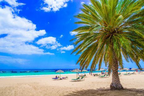 Rejse til Tenerife. Oplev den elskede feriedestination Tenerife på en rejse, hvor I både kan nyde vejret, slappe af og gå på opdagelse. Rejsen inkluderer 7 overnatninger på hotellet Lagos De Cesar, All Inclusive, tryghedspakke, dansktalende rejseleder og