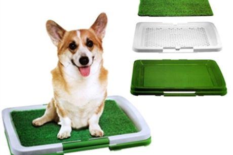 WC para Cães com Tapete de Relva Sintética por 18€. PORTES INCLUIDOS.
