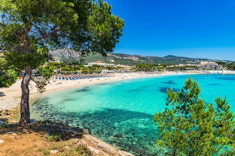Mallorca med All Inclusive. Besøg smukke Mallorca, der byder på lange sandstrande, smagfuld tapas og et utal af skønne ferieoplevelser. Rejsen inkluderer 7 overnatninger på Globales Mimosa i Palma Nova med All Inclusive, Tryghedspakke og fly fra BLL, AAL