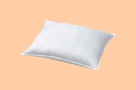 Hoofdkussen van hotelkwaliteit Voor een optimale nachtrust<br /> Anti-huisstofmijt behandeld<br /> Geschikt voor zij en rug slapers