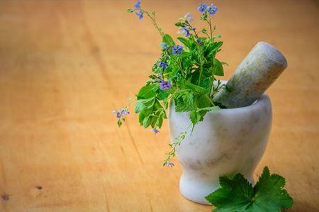 Se se interessa por plantas medicinais e gostava de aprender mais sobre o assunto, este é o curso certo para si! Com a  iLabora the E-Learning Company, aproveite agora por apenas 39€