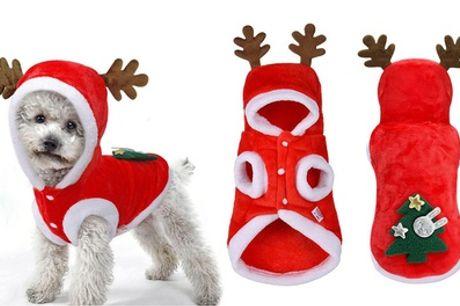 1 of 2 kerstpakjes voor honden en katten, inclusief verzending