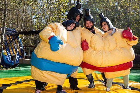 3 sjove aktiviteter  Vælg mellem: Sumobrydning for op til 5 el. 12 personer, drifter Go-Kart for op til 5 el. 12 personer eller lav egen musikvideo for op til 5 el. 12 personer.