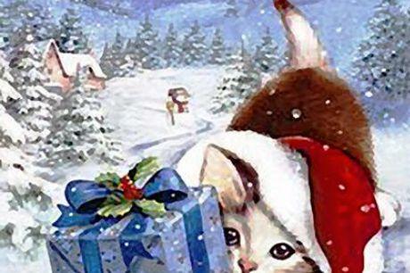 Diamond Paint - Kattekilling glæder sig til julegaven 40x60 cm. Kattekilling glæder sig til julegaven Sættet indeholder følgende: Et sæt inkluderer diamant, lim, limværktøjer, diamantholder, et maleri, en farveboks.  Produktet leveres med farvede firkante