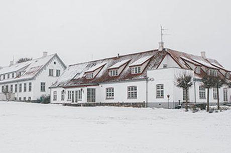Bliv klar til julen med et besøg på Sonnerupgaard Gods' indbydende julemarked den 19. november - lige i hjertet af Midtsjælland