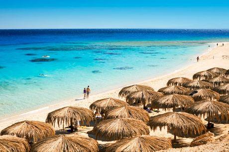 Rejs med Apollo til Hurghada og få All Inclusive på hotel lige ved havet
